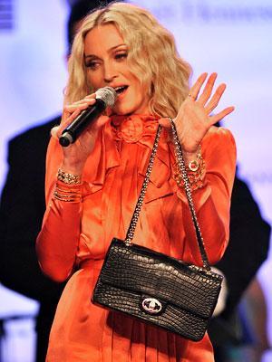 Túi xách nạm kim cương Chanel